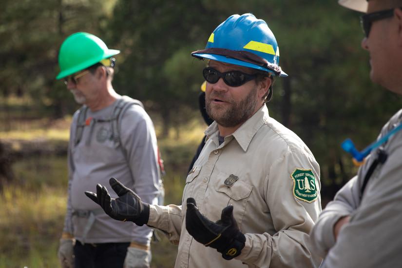 Forest_Volunteers-2.jpg