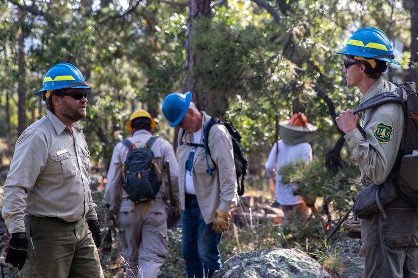 Forest_Volunteers-4.jpg