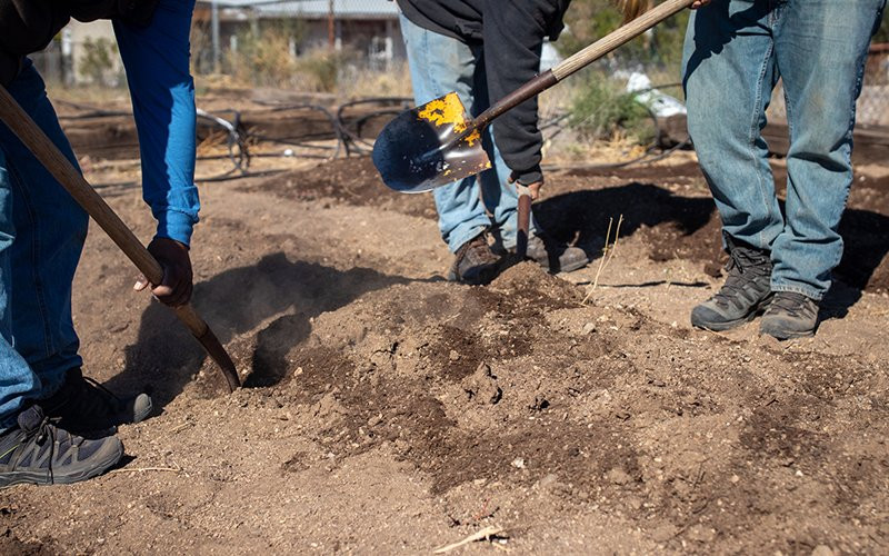Sterling Johnson and two youth interns with Ajo Center for Sustainable Agriculture till soil at the center's incubator farm. The center educates residents of Ajo and the Tohono O'odham Nation about the advantages of farming, and it operates a gardener's network and a free seed program.