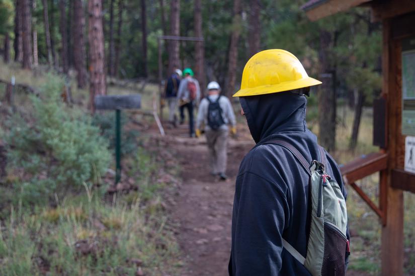 Forest_Volunteers-3.jpg