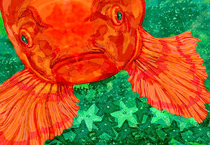 FISH FACE HEAD ON 2.jpg