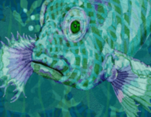 FISH HEAD.jpg