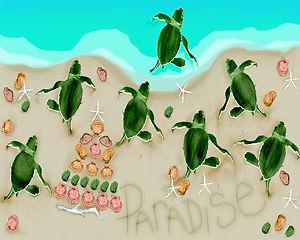 2015 turtle 2_edited.jpg