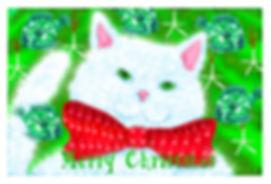 christmas cat .jpg