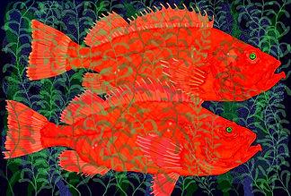 redfish test.jpg
