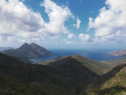 Corsica Bird View