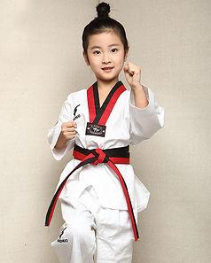 Taekwondo for barna.jpg