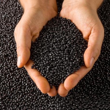 Black Pellets In Hands - Copy.jpg