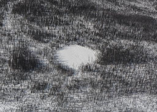 Tungus meteorite