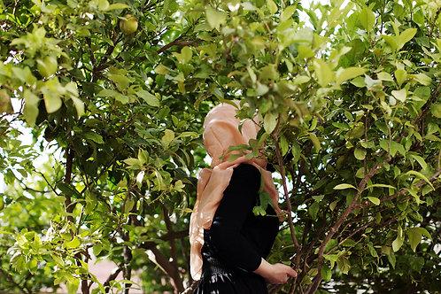 ANDREA GJESTVANG: Doaa (picking lemons)