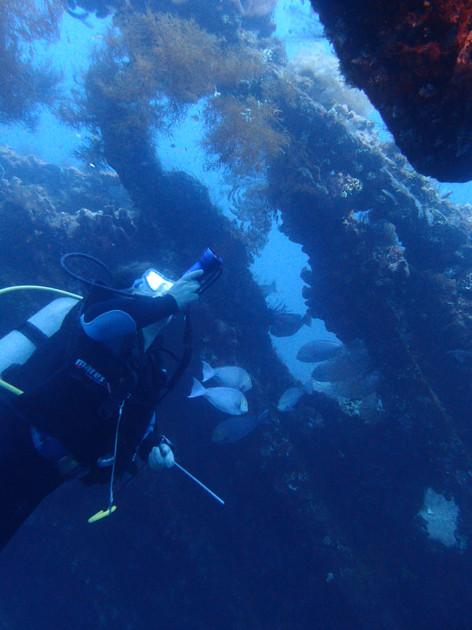 Tulamben Wreck - épave de l'USS Liberty