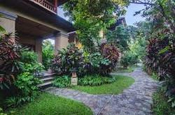 Hotel selection; Hôtel verdoyant de Bali