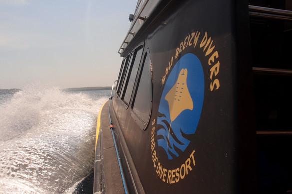 Diving boat , Logo BALI BREIZH DIVERS