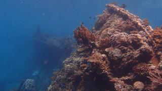 Epave à Bali