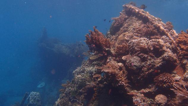 Wreck Bali - Epave à Bali