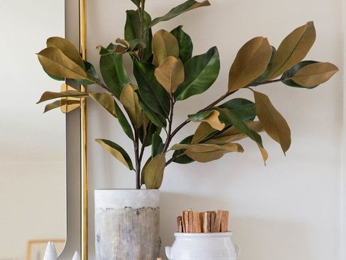 Holiday Greenery How To's & Go To's