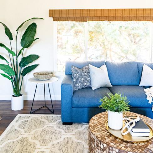 Lovely La Jolla Living | Realm Design Co. | San Diego, CA | Photographer: James Furman