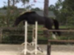 Pax-jump-chute.jpg