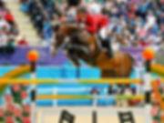 Horse_Plot_Blue-_2big.jpg
