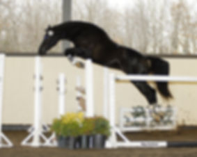 Raven-jump-chute-72.jpg