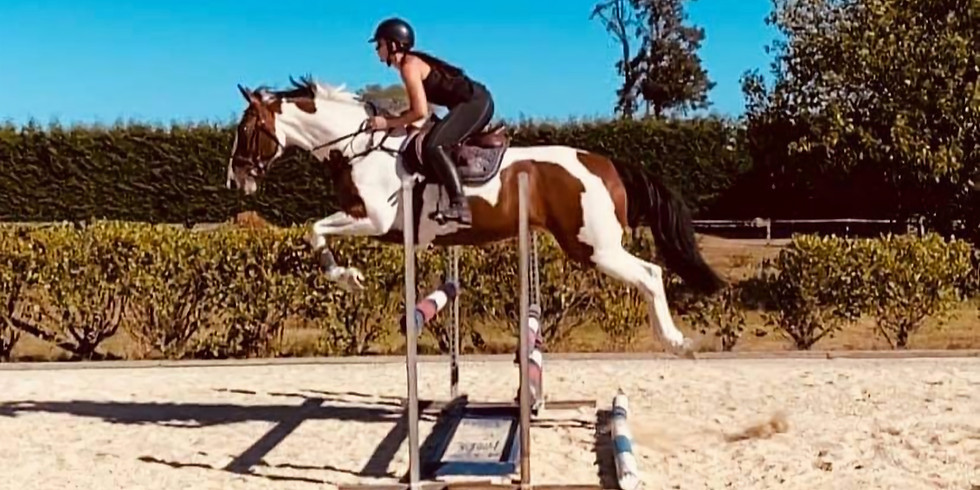 Winter Show Jumping July 18th