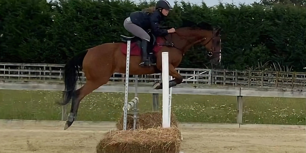 Winter Show Jumping August 15th