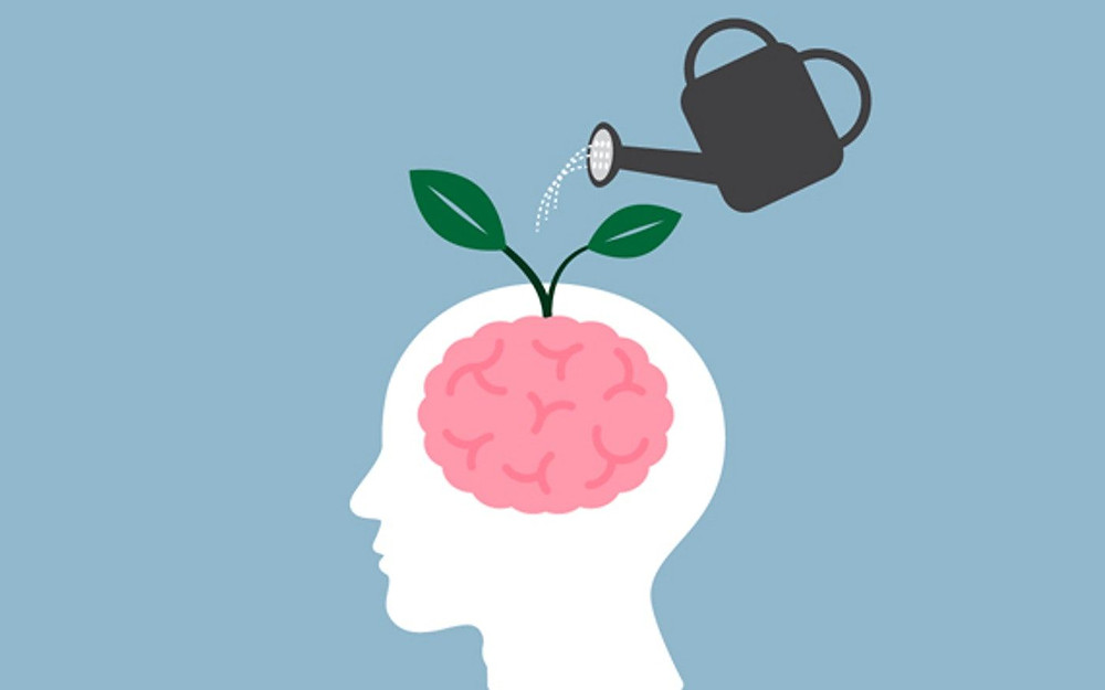 watering can pouring water on plant growing out of a brain