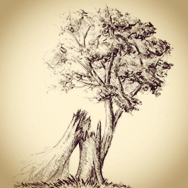 drawing of a broken tree