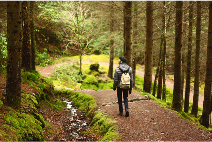 man with a backpack walking on a forrest path