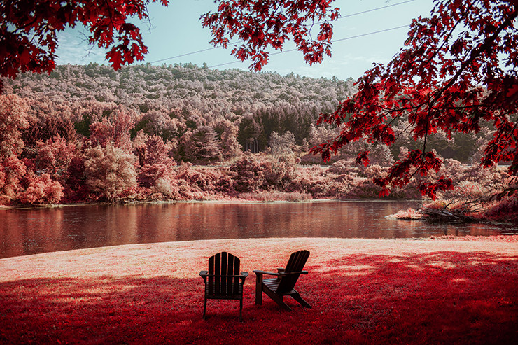 Adirondack chairs overlooking a lake that is surrounded by trees