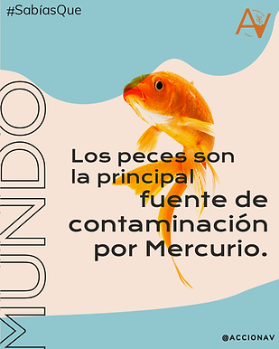 peces.png
