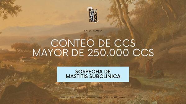 A MAYOR NÚMERO DE CCS, MENOR VOLUMEN DE