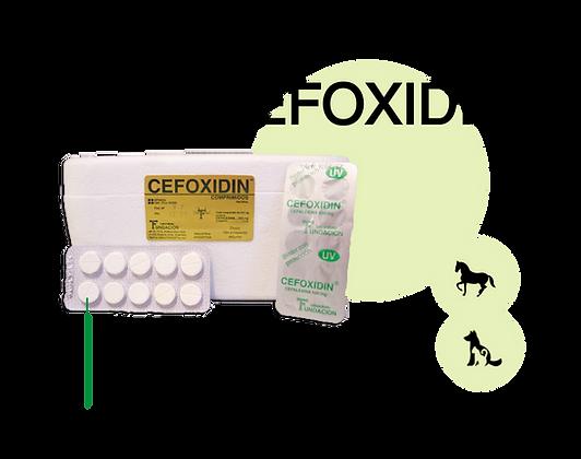 cefoxidin.png