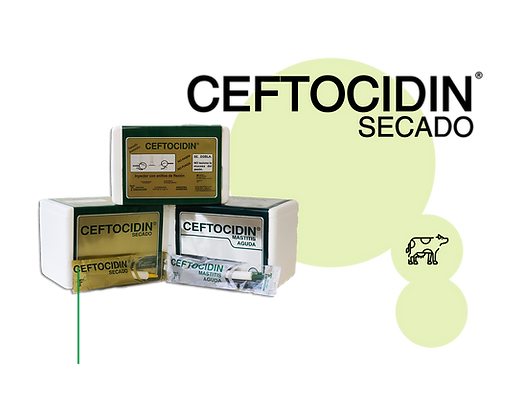 Ceftocidin-Secado.png