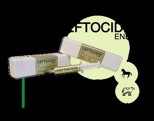 Ceftocidin-Endo.png