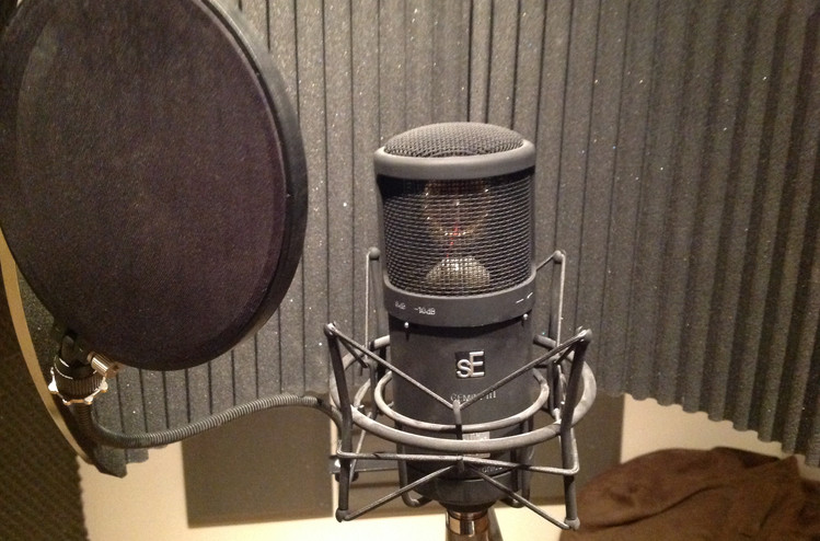Valve Microphone