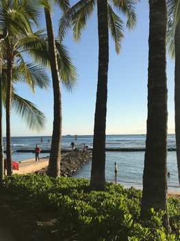 Wine By Appointment Takes Hawaii By Storm