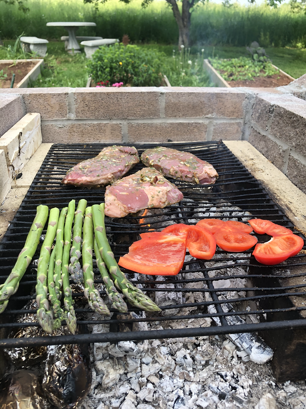 Grilling Over and Open Fire