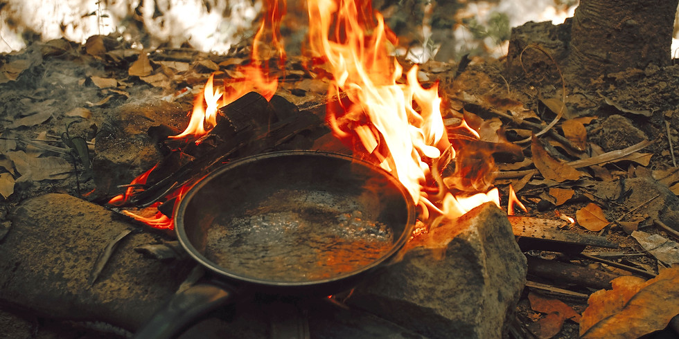Wild Workshop: Cooking with Fire and Spring Forage
