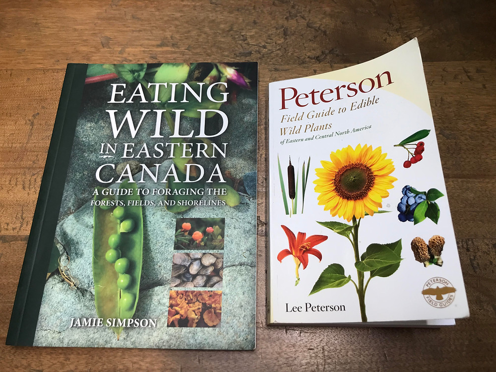 Foraging Field Guides for Beginners