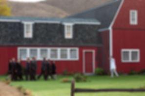 Investors on the farm