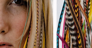 Hair Extensions & Hairbands