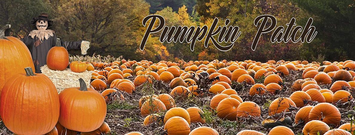 Pumpkin Patch Banner.jpg