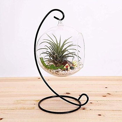 Hanging Succulent With Stand kit [Minimum Order 50]