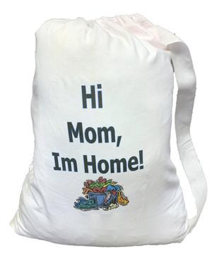 laundry-bag-1jpg