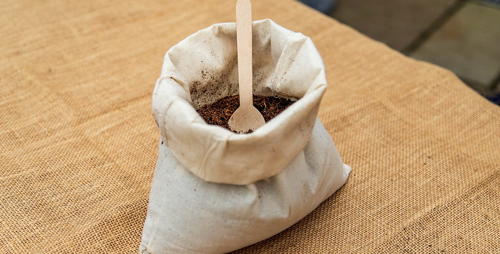 For a Pet   Small Memorial Planting Kit