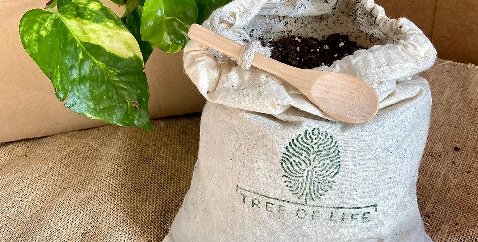 For a Person   Medium Memorial Planting Kit
