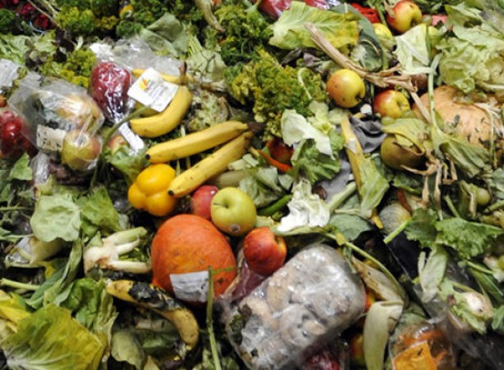 Food Waste:A growing problem with simple solution
