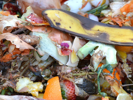 Kitchen Waste Composting : Just a click away