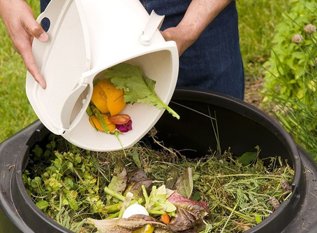 Composting: A habit which everyone should do at home